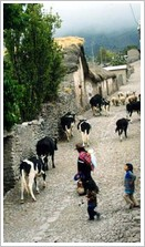 View of Peru Village